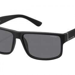 Polaroid Sunglasses PLD2030/S DL5/Y2
